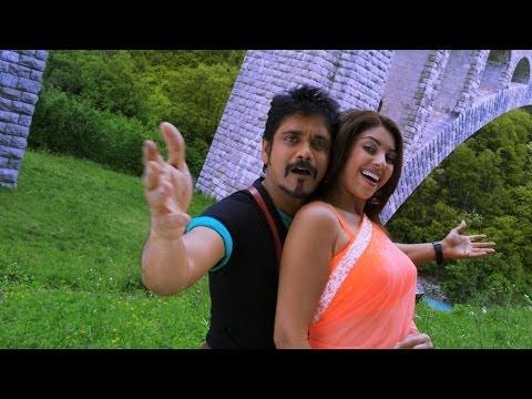 Bhai Movie