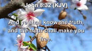 A Longing To Know The Truth: You Shall Know The Truth And The Truth Shall Make You Free