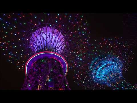 Singapore's Garden by the Bay Lights Show