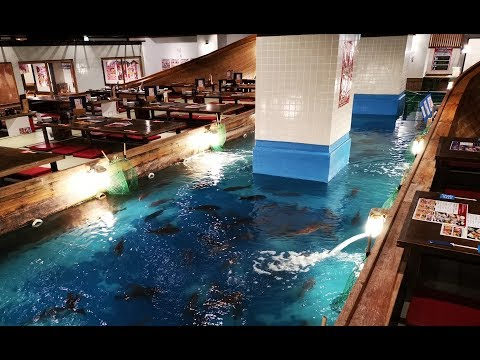 Fish While You Eat! Zauo Fishing Restaurant Osaka 釣船茶屋ざうお 難波本店