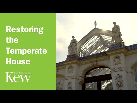 Restoring the Temperate House at Kew Gardens