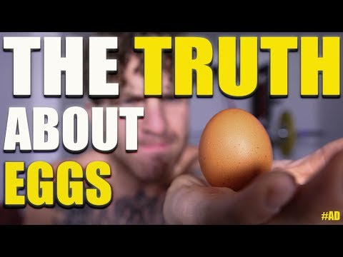 The Truth About Eggs!