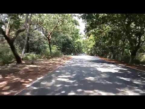 Konark temple road , Odisha state