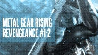 Metal Gear Rising: Revengeance #1-2: Art of the Parry