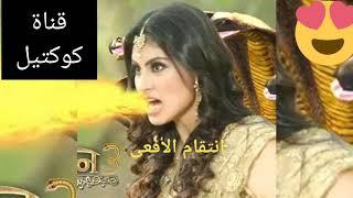 مشاهدة مسلسل حب وانتقام افعى الجزء الثاني