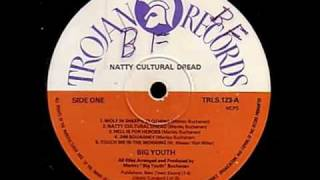 Big Youth -Every Nigger Is A Star - (Natty Cultural Dread)