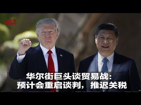 华尔街巨头谈贸易战:预计会重启谈判,推迟关税 | 明镜焦点(20190628)