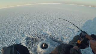 На старых точках удочка в ДУГУ ч 1 Ловля окуня на балансир Зимняя рыбалка 2020 2021