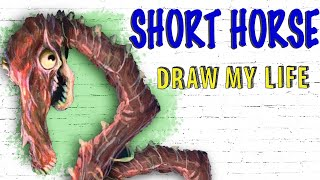 Short Horse : Draw My Life