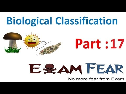 Biology Biological Classification part 17 (Fungi types: Phycomycetes, Ascomycetes) CBSE class 11 XI