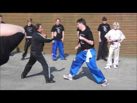 GM Walter Toch in action in still 25000 lessons in Chinese Martial Arts
