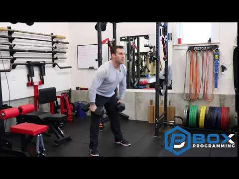 DB Hang Squat Cleans
