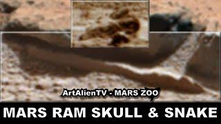 LIFE ON PLANET MARS - Goat Skull & Snake ? ArtAlienTV - 1080p