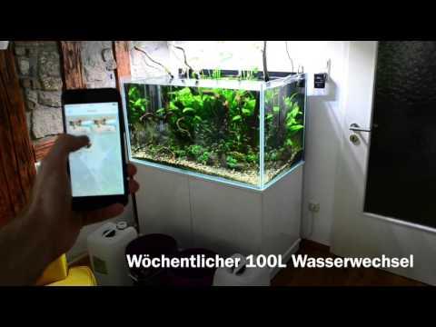 Aquatlantis elegance plus 78 led doovi for Aquarium wasserwechsel