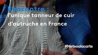 Rencontre : l'unique tanneur de cuir d'autruche en France