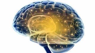 Cómo entrenar a tu cerebro para abandonar los malos hábitos