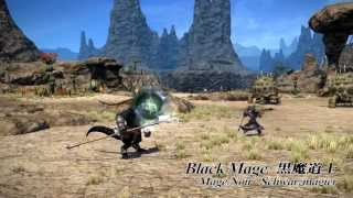 FINAL FANTASY XIV Job Actions