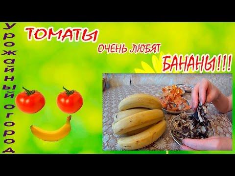 Бананы - Польза и вред бананов