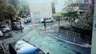 Собаки покусали женщину Ростов