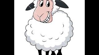 dessin animé drôle de moutons, dessin animé d´animal, dessin animé pour les enfants