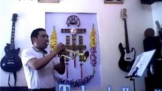 Chân Thành Cảm Mến (Trumpet - Thái Hòa) Đa Phạn
