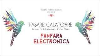 Pasare Calatoare -  Fanfara Electronica