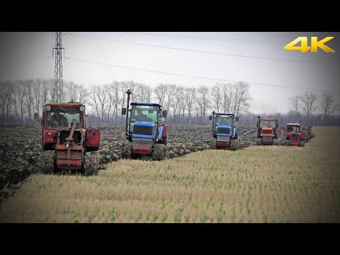 МЕГА-ВСПАШКА ПО-РУССКИ: тракторы Агромаш 90, ВТГ90 и ДТ75. Russian Plowing With Caterpillar Tractors