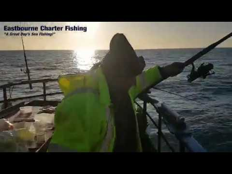 Fishing Report From Eastbourne Charter Fishing - 29th Nov 2019
