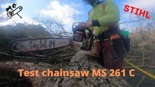 On me prête la tronçonneuse MS 261 C STIHL / abattage domino #chainsaw #bucheron