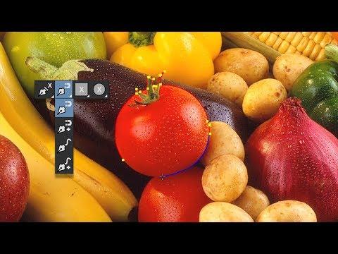 Mocha Pro 2019 Adobe Plug-in