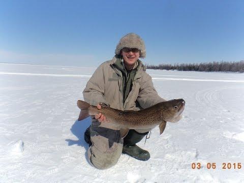 видео рыбалка на озере виктория