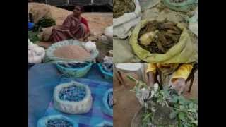 Medicinal Rice P5 Formulations for Eleiotis Overdose: Pankaj Oudhia