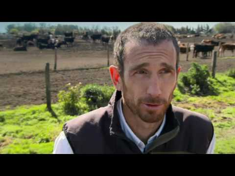 BBC A Cook Abroad Series 1 3of6 John Torodes Argentina 720p