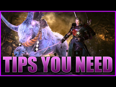 Nioh - TIPS NEW PLAYERS NEED