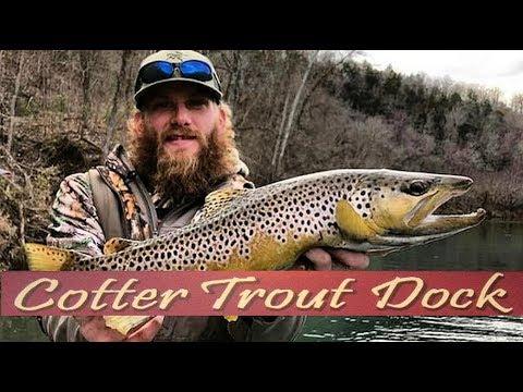 Arkansas White River Trout Fishing Report January 30, 2019