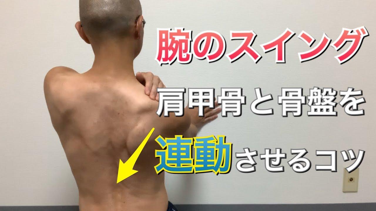 肩 甲骨 りっこう 「胸郭出口症候群」 日本整形外科学会 症状・病気をしらべる