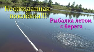 Неожиданная поклёвка Рыбалка летом с берега Ловля рыбы на вертушку Pontoon 21 Trait 00