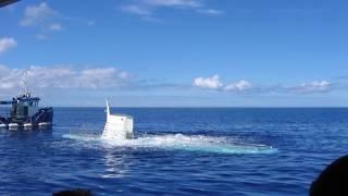 Разведка США узнала о строительстве КНДР оснащенной баллистическими ракетами подлодки