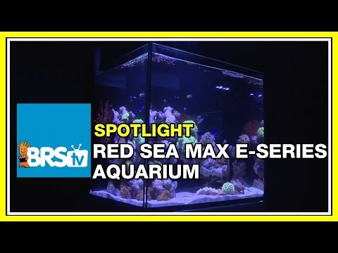How To Set Up An All In One (AIO) Reef Tank - Rea Sea Max E-Series | BRStv Spotlight
