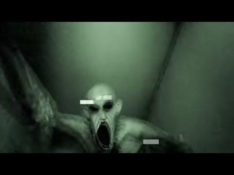 самые страшные существа снятые на видео необъяснимые вещи