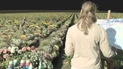 mecom vision GmbH   ARD-Spielfilm 'Einmal Bauernhof und zurück'   VFX Breakdown