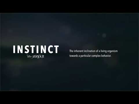 "Not your regular distortion plugin, Instinct is a ""living organism of drive, dynamics and tone"" 