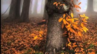 Sarah Brightman - Memory