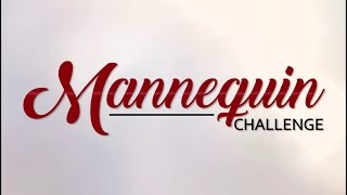Video Mannequin Challenge 2 | COLLEGE EDITION | BORED/SIlly download MP3, 3GP, MP4, WEBM, AVI, FLV Januari 2018