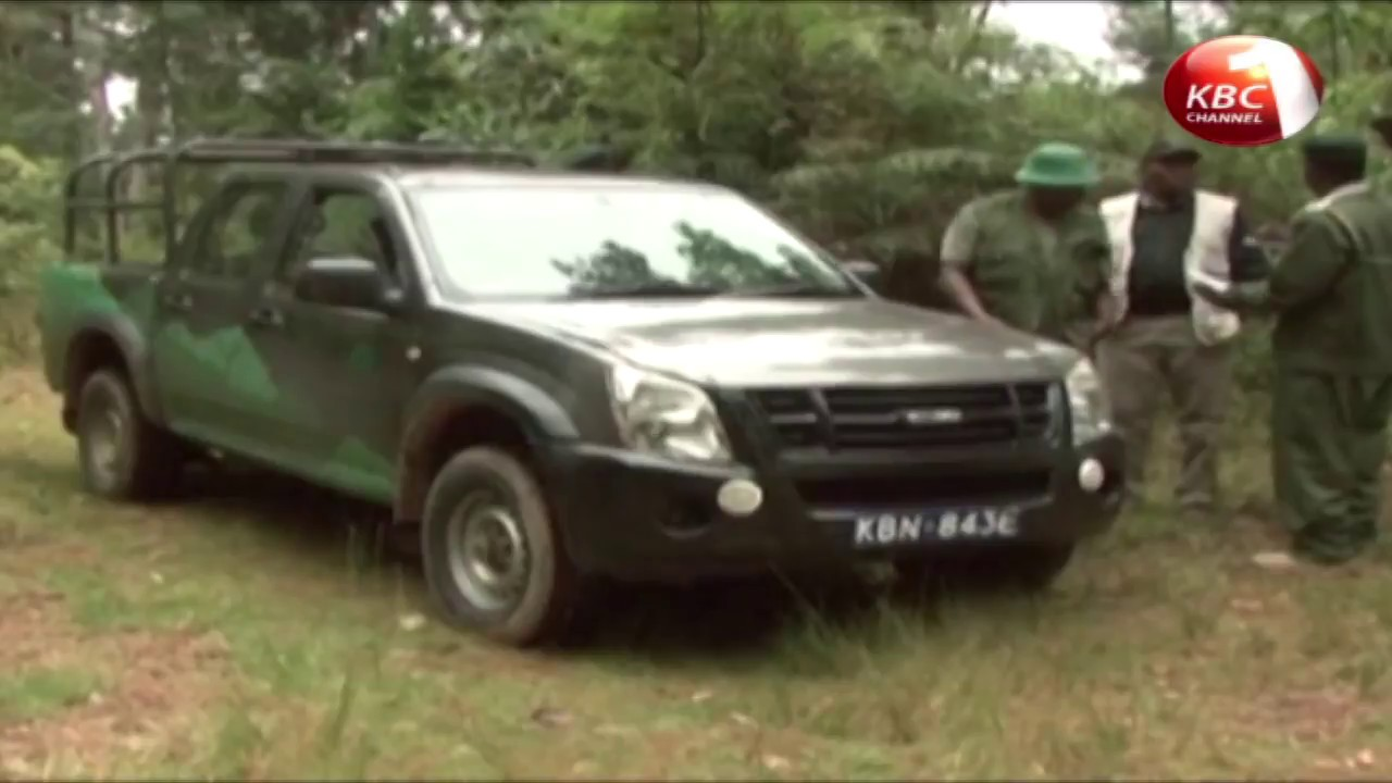 Environment CS wants forest rangers manning four key forests removed