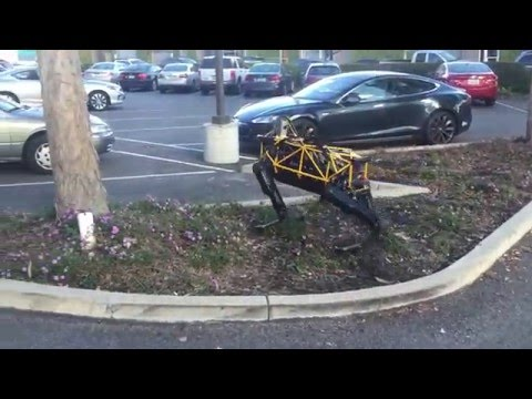 Thumbnail: See Spot Run — Robo romp in the Playground