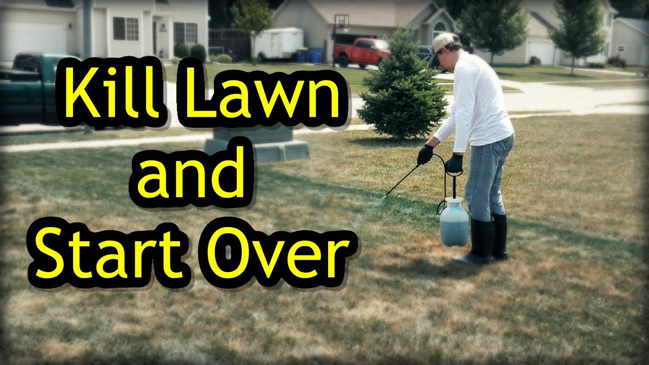 A Lawn And Start Over Renovation Step 1