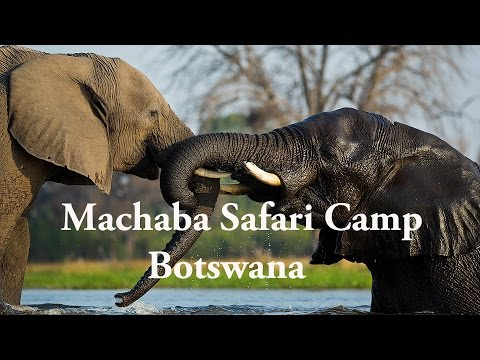 Machaba Luxury Safari Lodge and Camp, Botswana