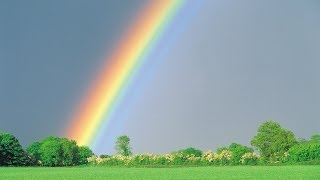オカリナでNHKのごちそうさんでゆずが歌った「雨のち晴レルヤ」 を吹...