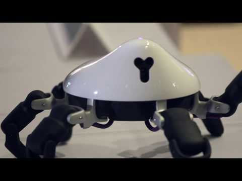 HEXA Is an Agile, Spider-Like Robot That You Can Program Yourself